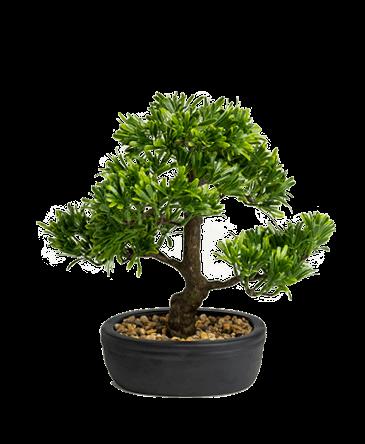 kunst bonsai boom in pot zwart