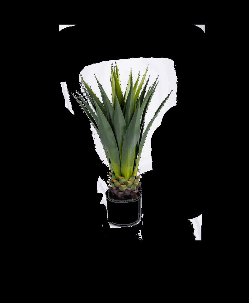 de bladeren van een kunst cactus