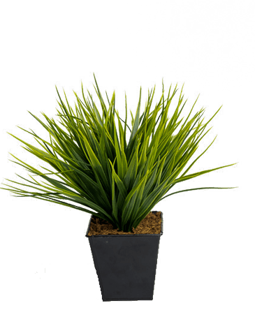 kunst grasplant in zwart potje