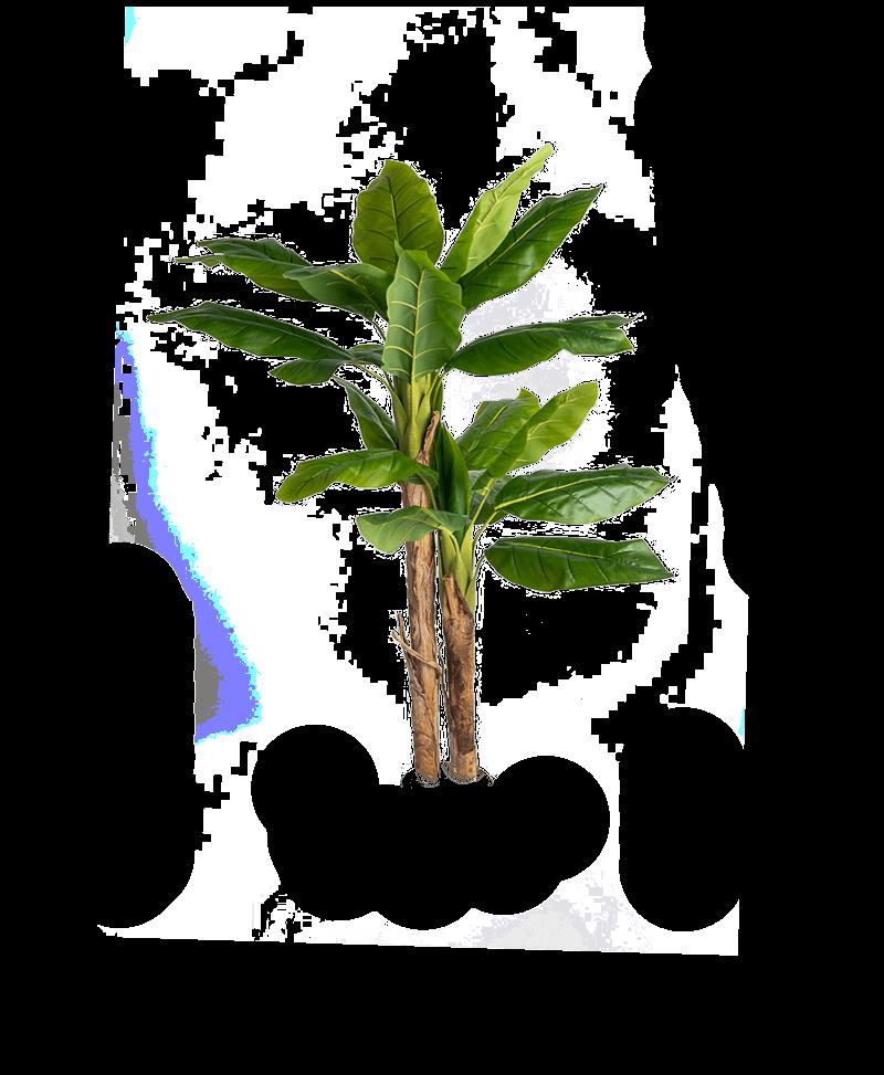 het bladerdak en de stammen van een kunst bananenboom 140cm